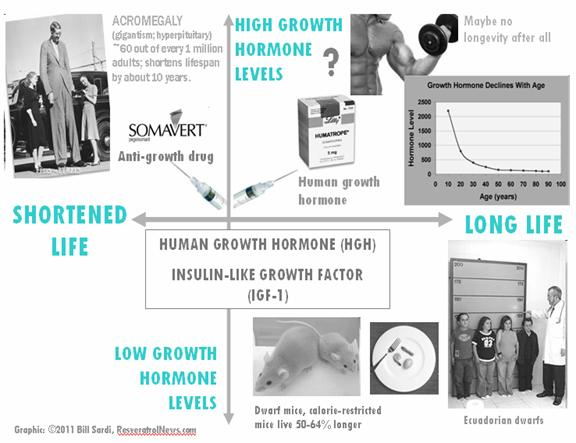 Human growth Hormone, Insulin-Like Growth Factor