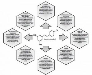Resveratrol: chart