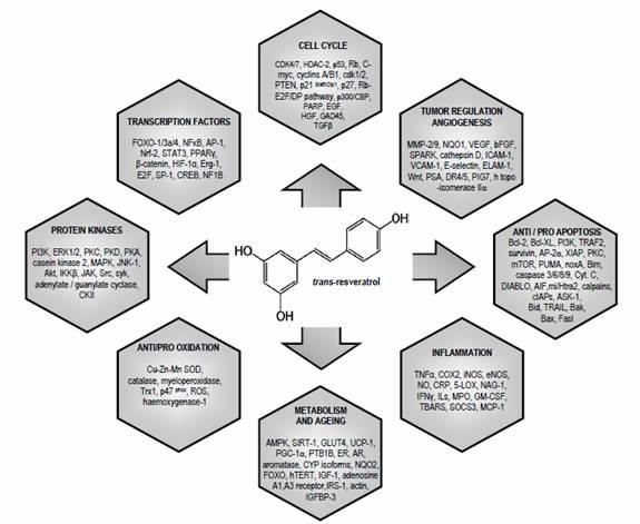 Resverartol: chart